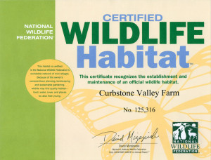 Certificate from the National Wildlife Federation