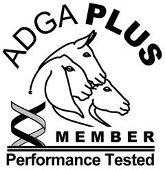 ADGA Plus Member - 2015